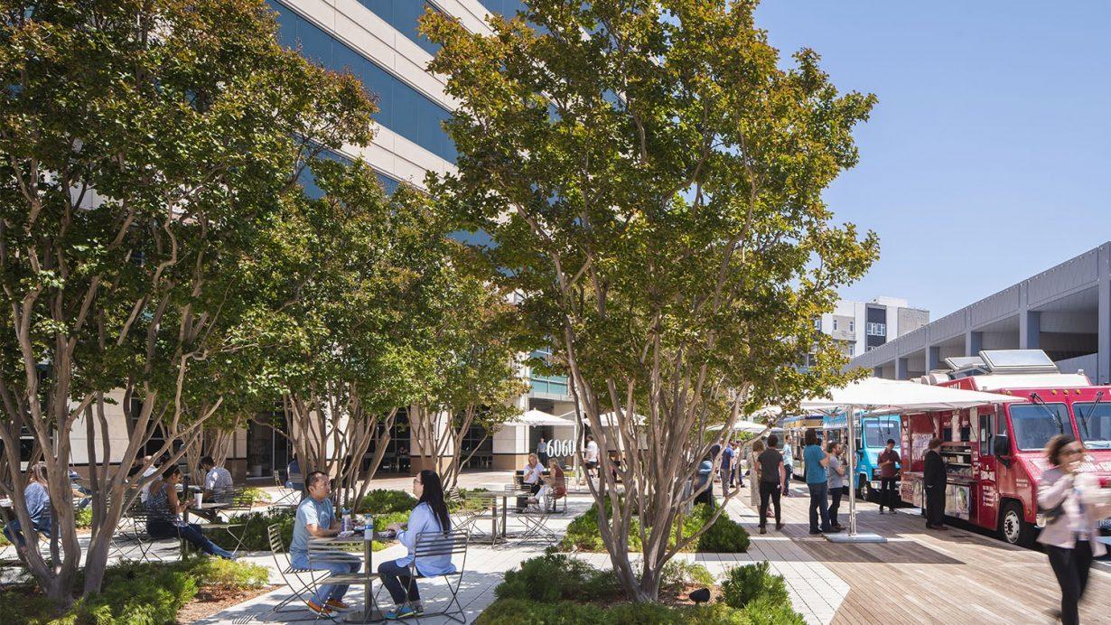 Playa District Campus