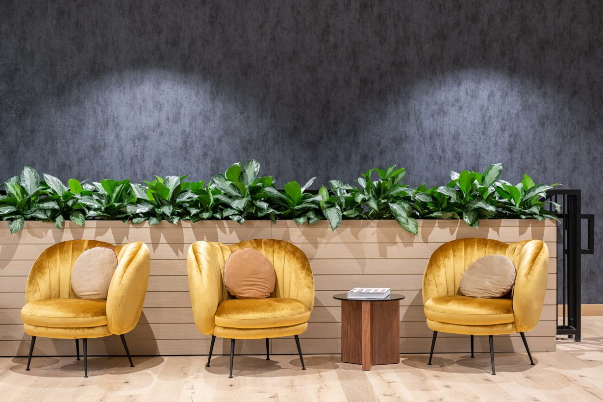 Plants —which have been shown to reduce stress — can be found throughout the workplace.